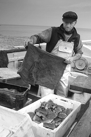 Cromer fisherman and box of crabs