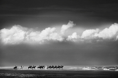 The Cavalry at Holkham sands.