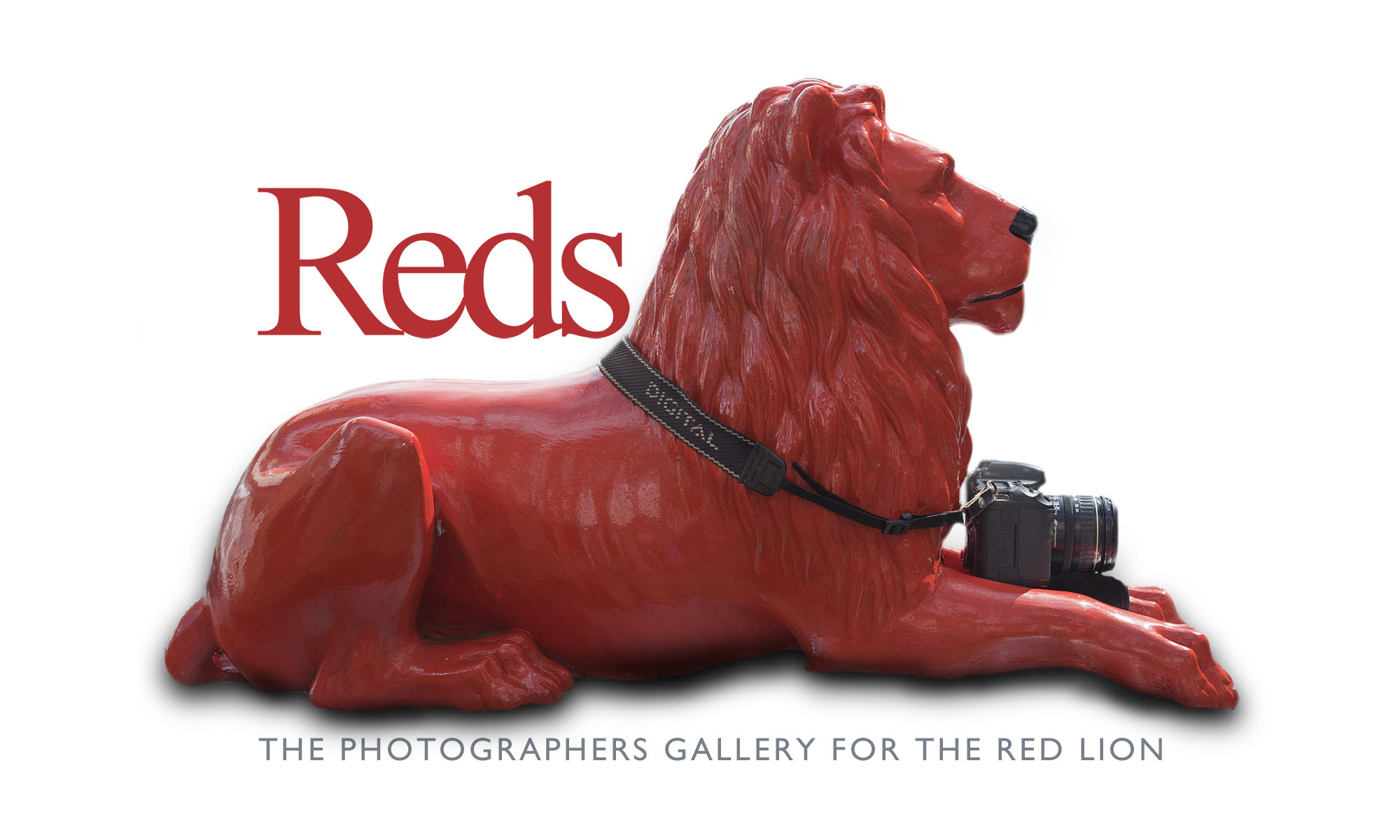 Reds Photographers Gallery