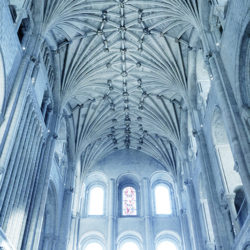 Colour photograph of Norwich Cathedral's roof.