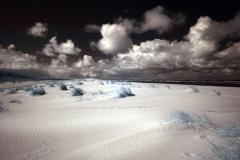Holkham dunes 4