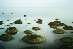 A rising tide No2