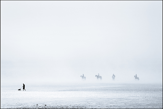 Photograph of horses on a misty beach on the Norfolk coast.
