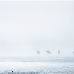 Horses in the mist and a lone dog walker on the sands near Hunstanton.