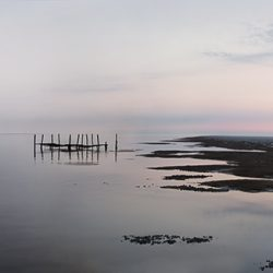Photograph of the mussel beds Hunstanton Norfolk.