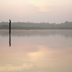 A photograph of Barton Broad Norfolk before sunrise.