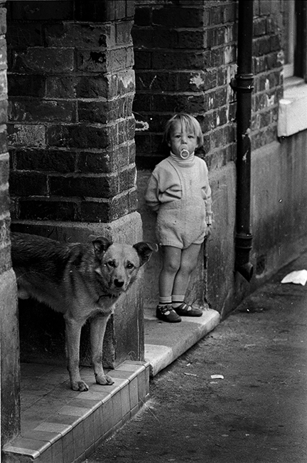 Black and white photograph of a little boy and a dog on their doorsteps in the back streets of Hull.
