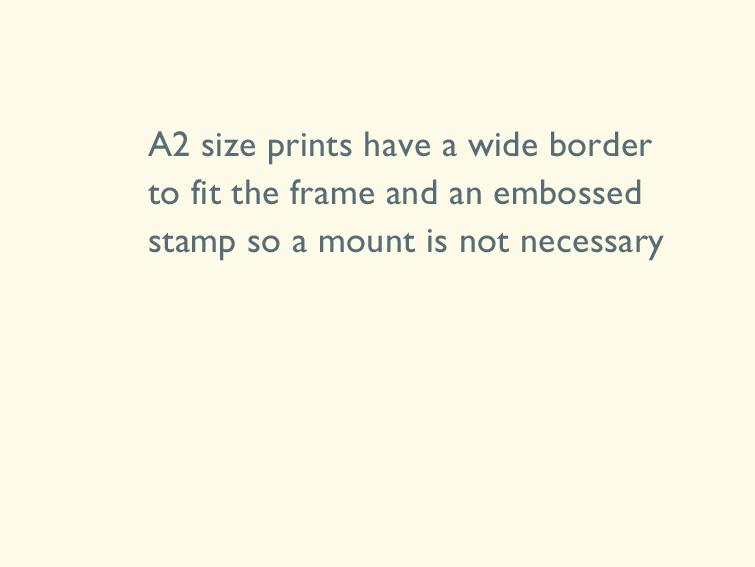 4 A2 size prints
