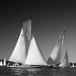 Black and white photograph of sailing boats at Wroxham Regatta.